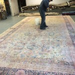 Miramar_FL-Professional-Rug-Cleaning