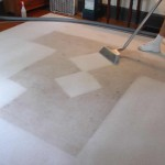 Miramar_FL_CARPET_CLEANING_004
