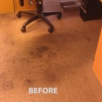 Miramar_FL_CARPET_CLEANING_016