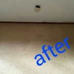 Miramar_FL_CARPET_CLEANING_021