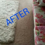 Miramar_FL_CARPET_CLEANING_023