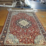 Miramar_FL_RUG_CLEANING_014